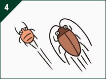 ダニやゴキブリが増えた